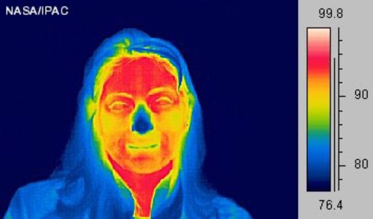 thermal image for input